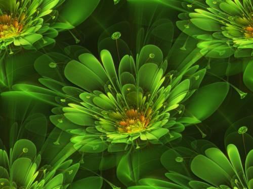 Зеленые Красивые зеленые цветы фоны: fony-kartinki.ru/photo/42