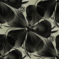 Серые Цветок фоны