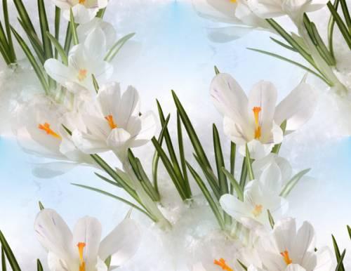 Весенние картинки не цветы
